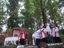 Odpust Kalwaryjski, 6 lipca 2014 r.